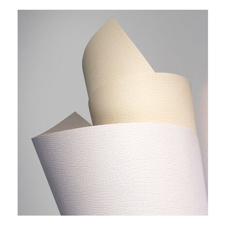 Carton BORNEO alb, format A4, 220g/mp